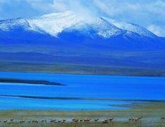 可可西里盐湖面积逼近青藏铁路公路
