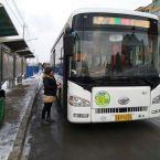 公交车队上路面督导安全行车