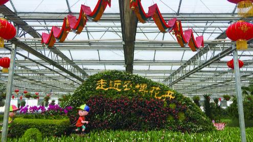 """第十届冬季农博会23日启幕 一场年味四溢""""欢乐盛宴"""""""