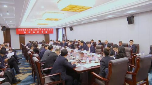省十三届人大二次会议分组审议政府工作报告