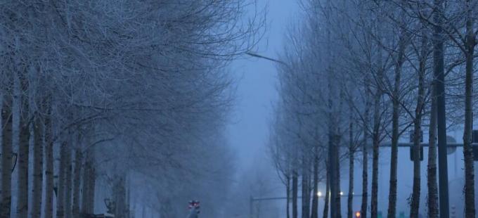 长春雪后现雾凇美景 周末清晨美翻天