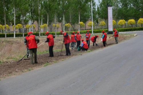 同心村党员志愿服务队集中整治村屯环境