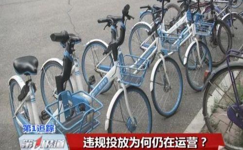 """被""""收藏""""的共享单车,哈罗在长春是怎样的一种存在?"""