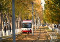 春城大街,有轨电车行驶在落叶大道中别有一番景色