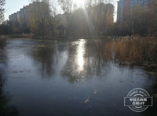 明日立冬 吉林人记得吃饺子