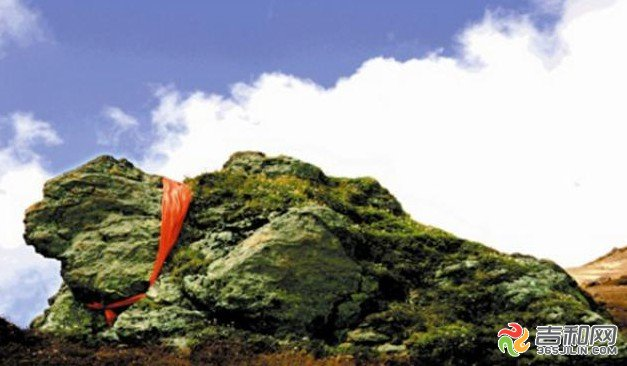 长白山-绿苔石龟介绍:在南坡中朝四号界碑和二号界碑附近,两只巨大的龟状岩石静卧峰上.其中绿苔神龟重约100多吨,又长又大,上面布满了翠绿的苔藓,高山杜鹃衬在周围。两只神龟一雄一雌,相距四公里左右,都是头西尾东,都在国境线上,成为南坡的一道风景。